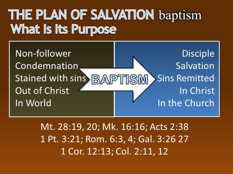 The Plan of Salvation baptism What Is Its Purpose BAPTISM Non-follower