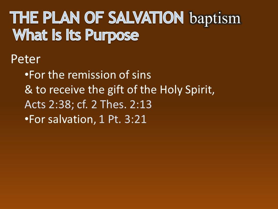 The Plan of Salvation baptism What Is Its Purpose Peter