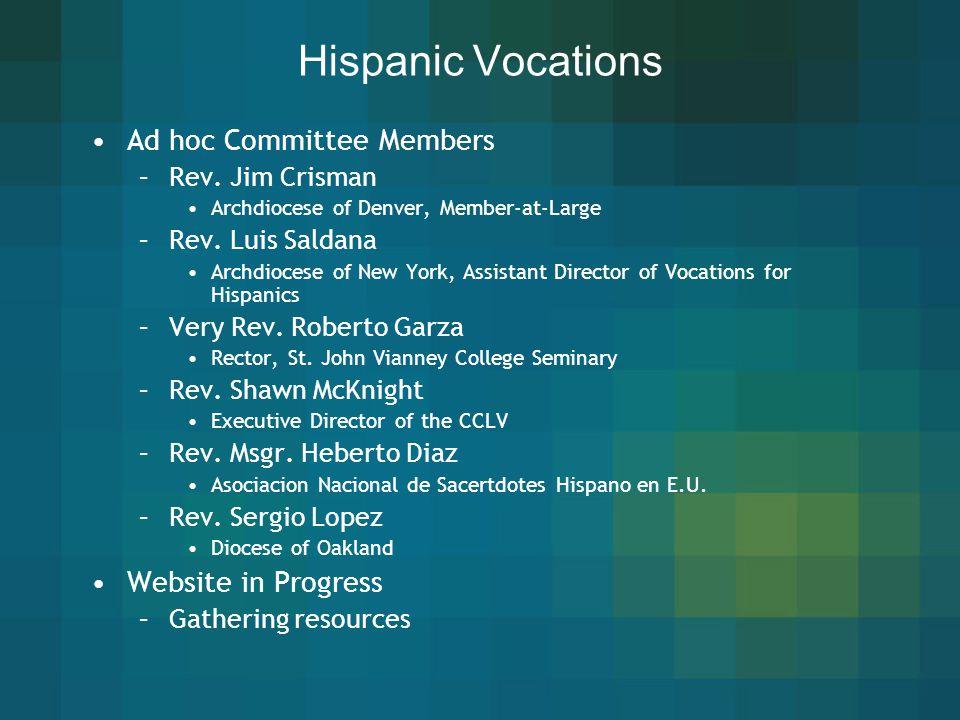 Hispanic Vocations Ad hoc Committee Members Website in Progress