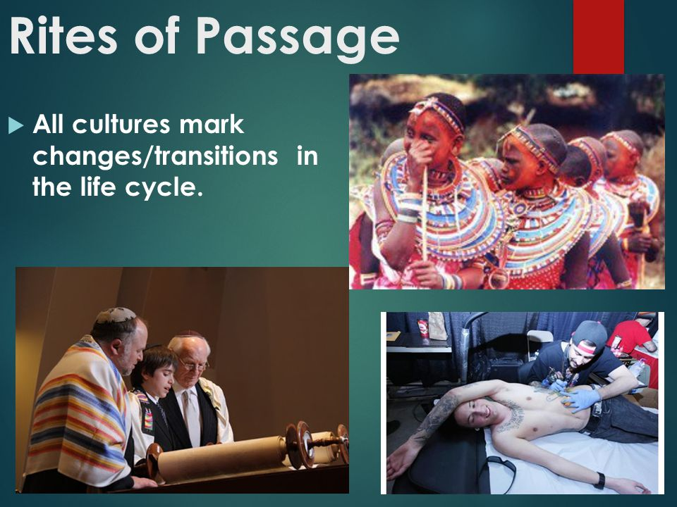 Rites of Passage All cultures mark changes/transitions in the life cycle.
