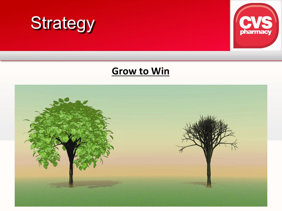 Strategy Grow to Win