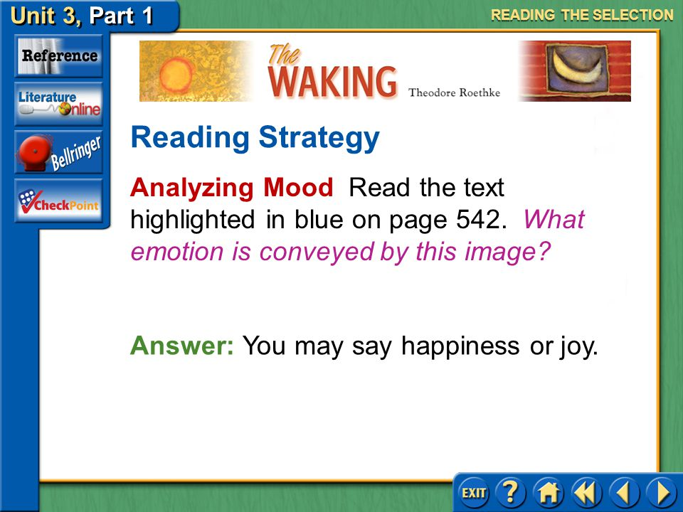 READING THE SELECTION Reading Strategy. Analyzing Mood Read the text highlighted in blue on page 542. What emotion is conveyed by this image