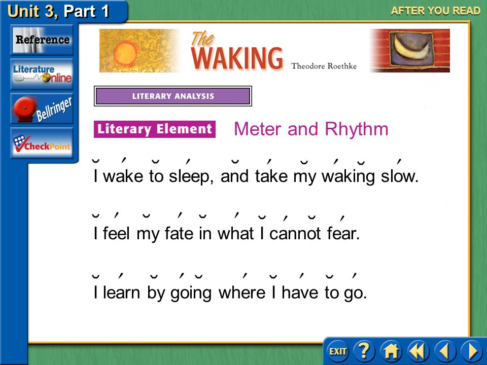 Meter and Rhythm I wake to sleep, and take my waking slow.