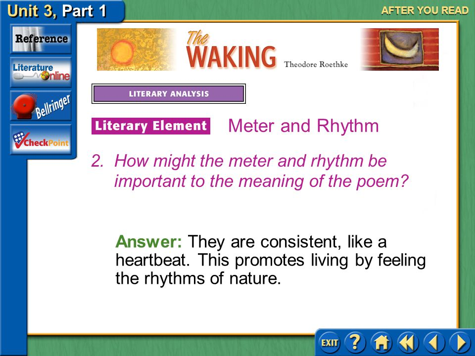 AFTER YOU READ Meter and Rhythm. How might the meter and rhythm be important to the meaning of the poem