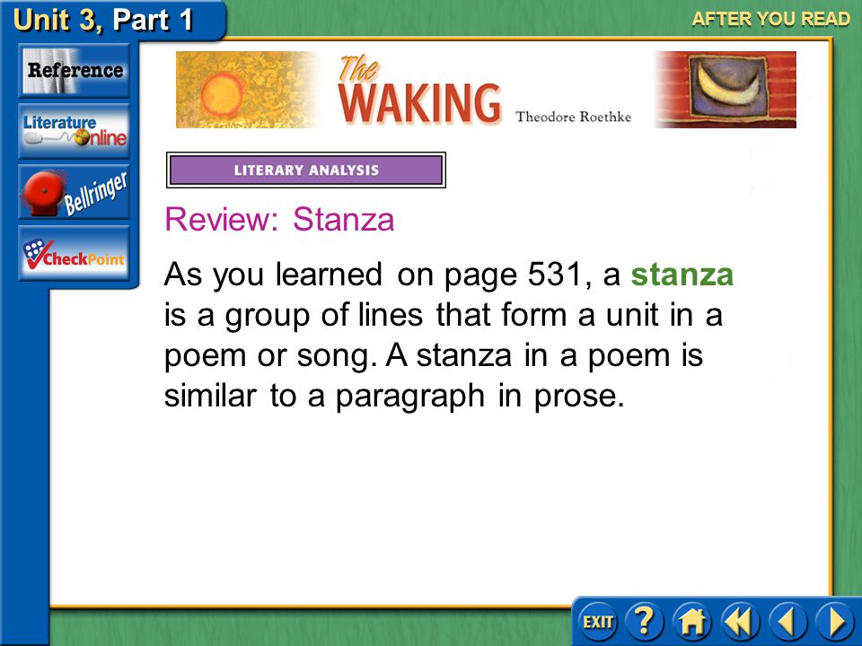 AFTER YOU READ Review: Stanza.
