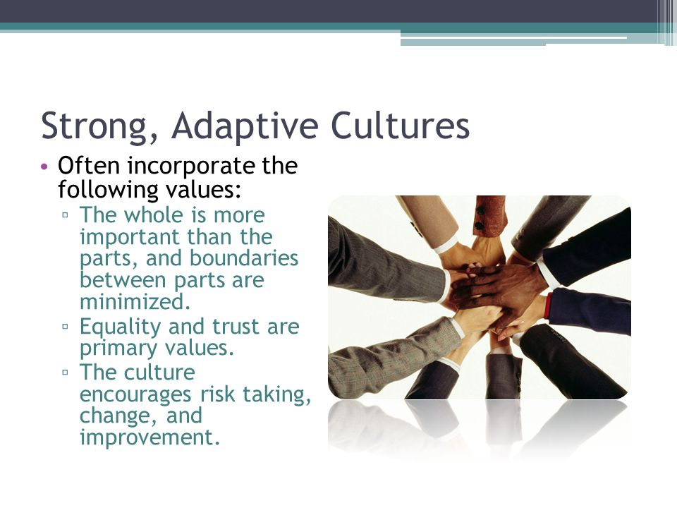 Strong, Adaptive Cultures