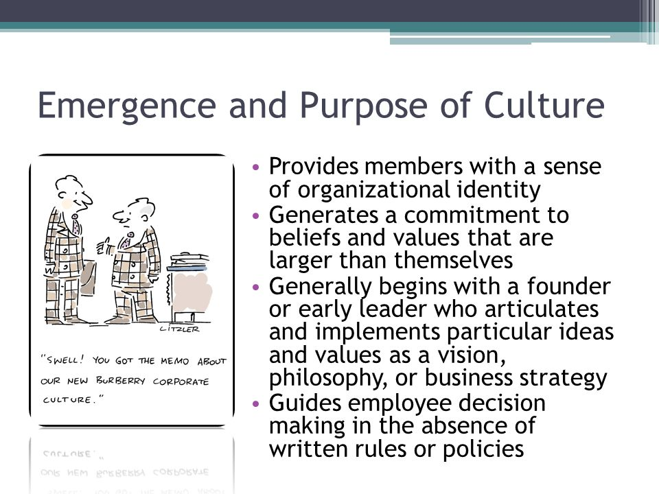 Emergence and Purpose of Culture