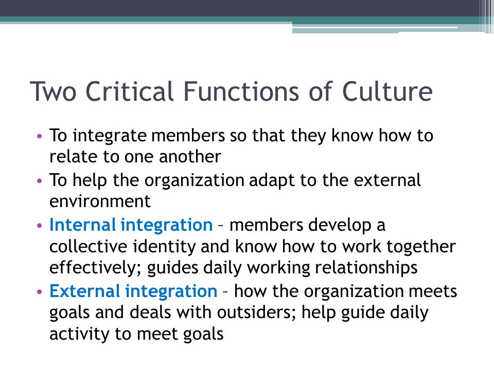 Two Critical Functions of Culture