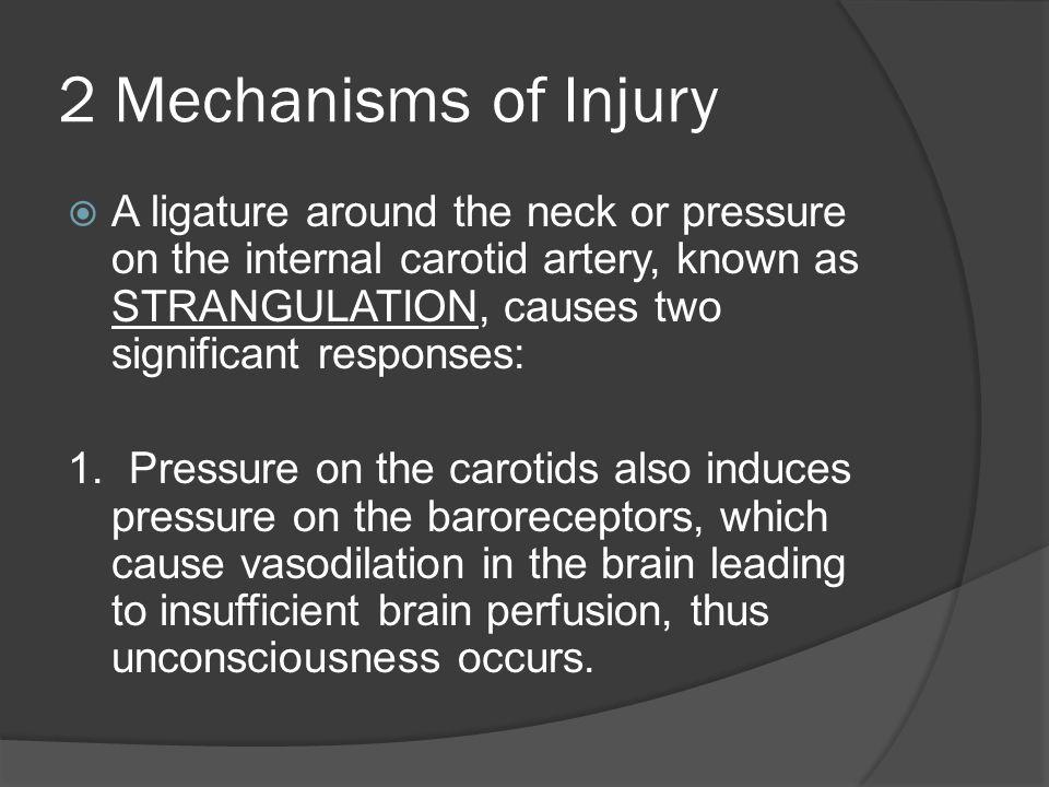 2 Mechanisms of Injury