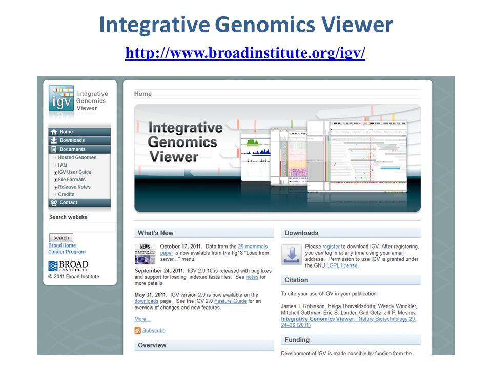 Integrative Genomics Viewer