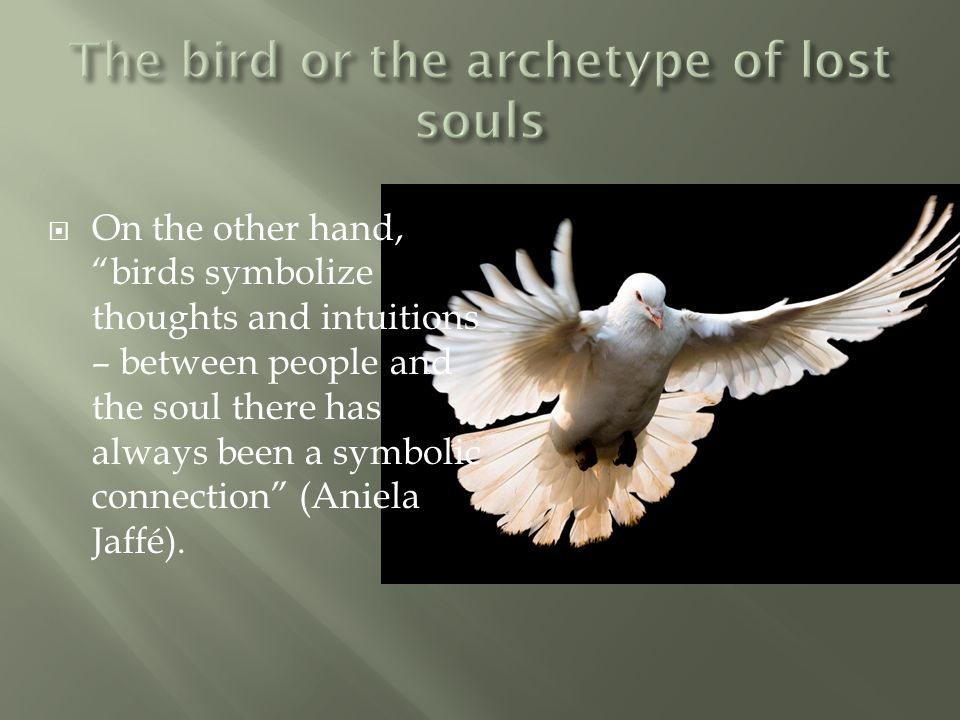 The bird or the archetype of lost souls