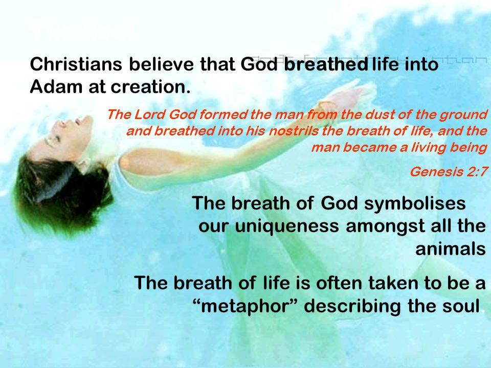 The Soul Christians believe that God breathed life into Adam at creation.
