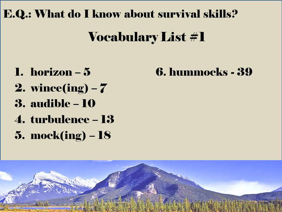 E.Q.: What do I know about survival skills