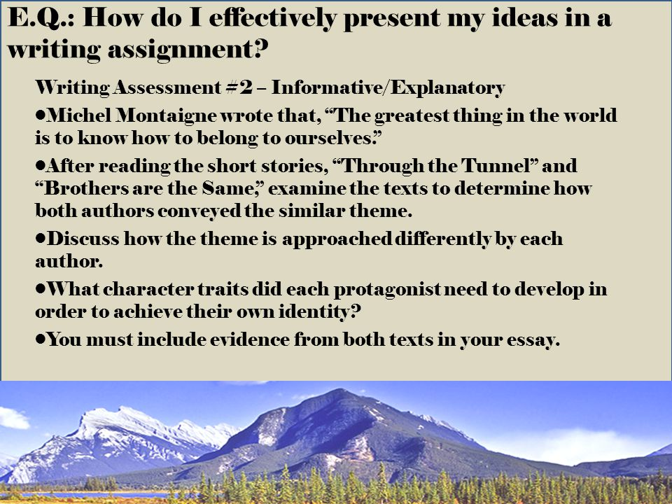 E.Q.: How do I effectively present my ideas in a writing assignment