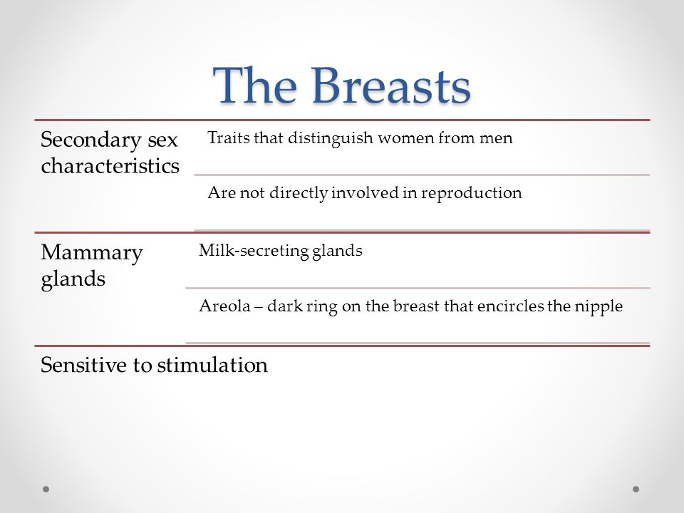 The Breasts Secondary sex characteristics Mammary glands