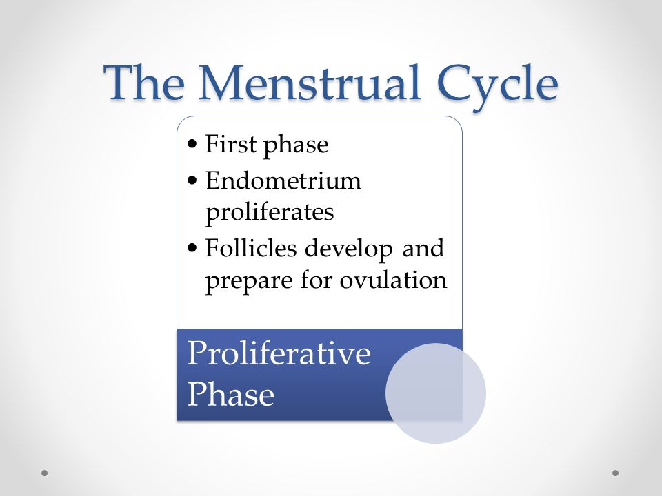 The Menstrual Cycle Proliferative Phase First phase