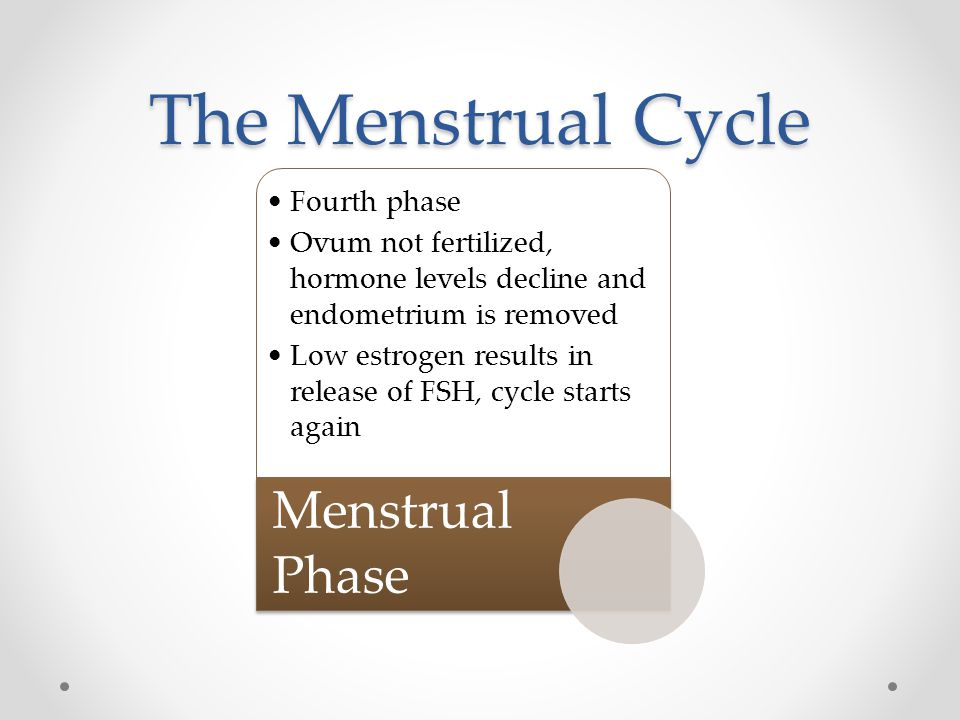 The Menstrual Cycle Menstrual Phase Fourth phase