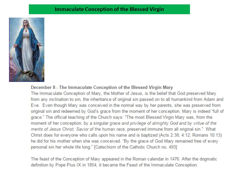 Immaculate Conception of the Blessed Virgin