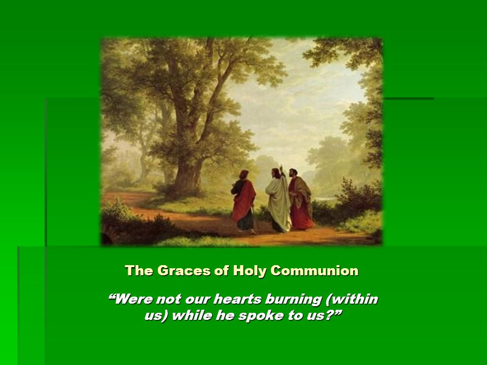 The Graces of Holy Communion