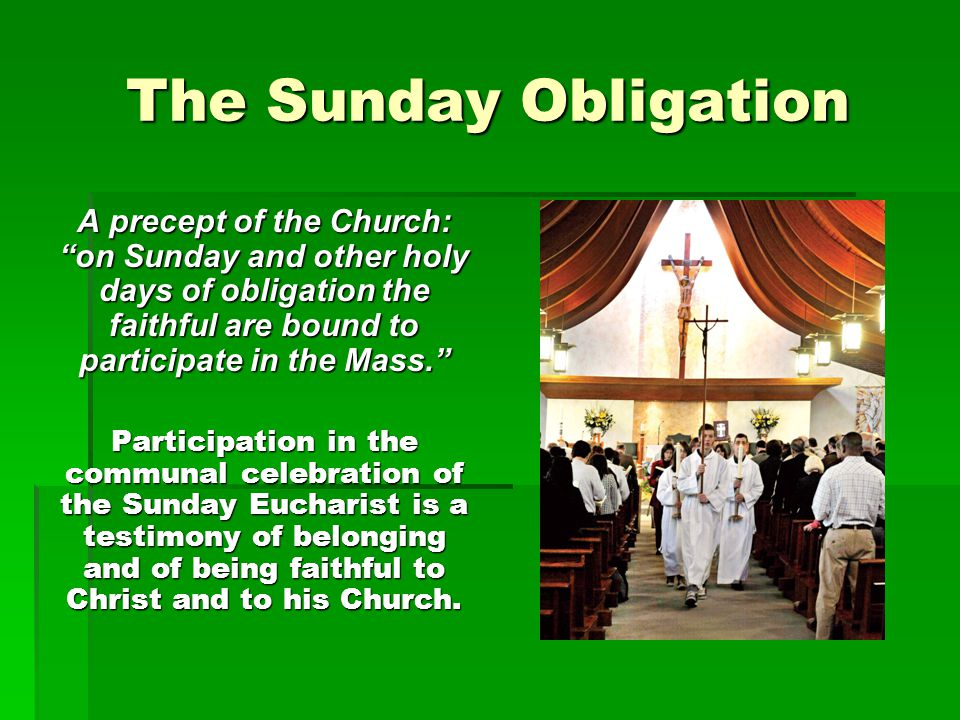 The Sunday Obligation A precept of the Church: on Sunday and other holy days of obligation the faithful are bound to participate in the Mass.