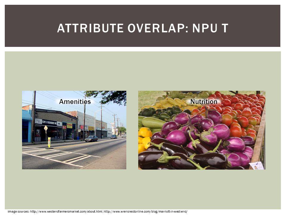 Attribute overlap: NPU T