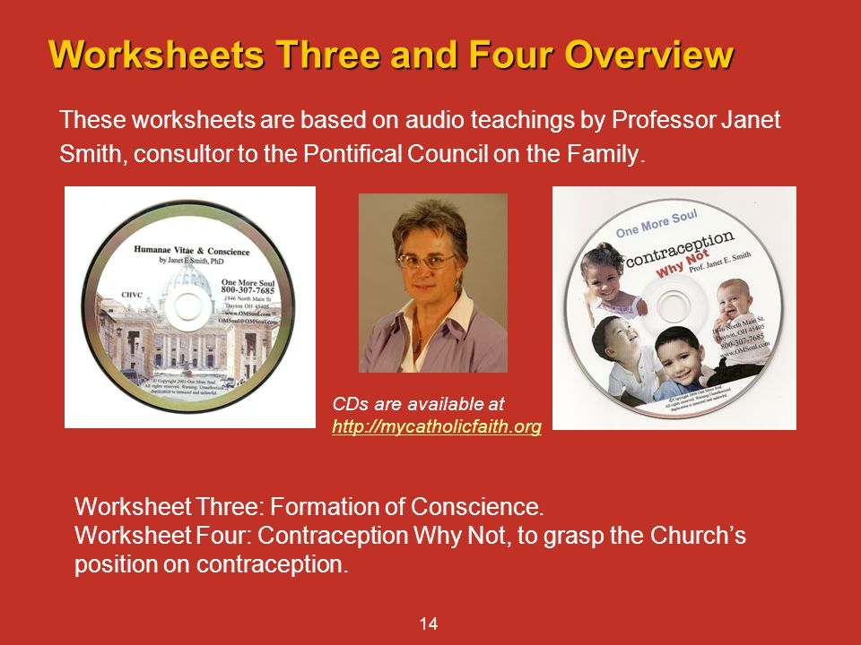 Worksheets Three and Four Overview