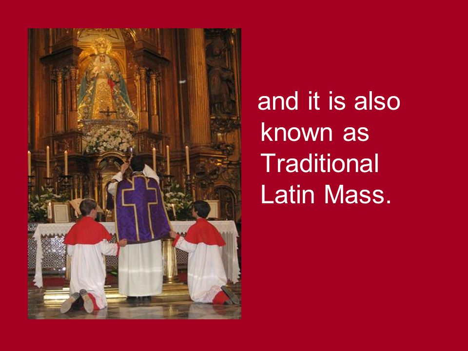 and it is also known as Traditional Latin Mass.