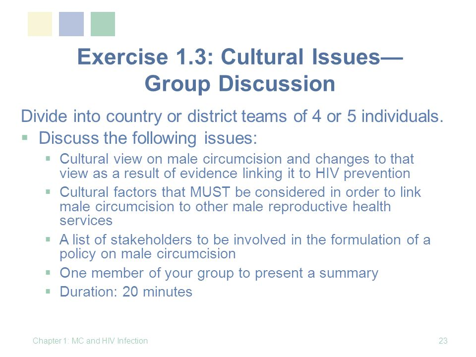 Exercise 1.3: Cultural Issues— Group Discussion