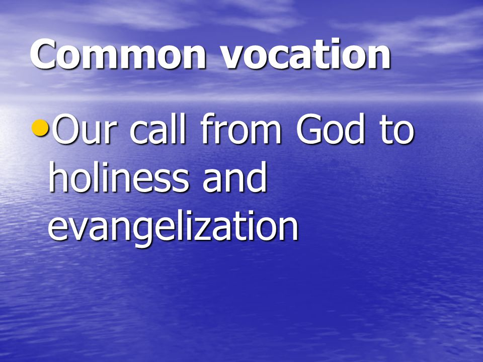Common vocation Our call from God to holiness and evangelization