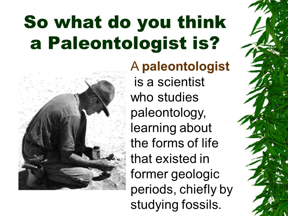 So what do you think a Paleontologist is