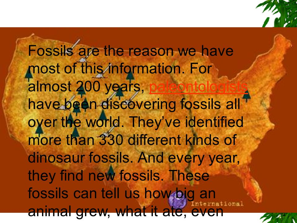Fossils are the reason we have most of this information