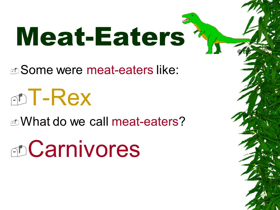 Meat-Eaters T-Rex Carnivores Some were meat-eaters like: