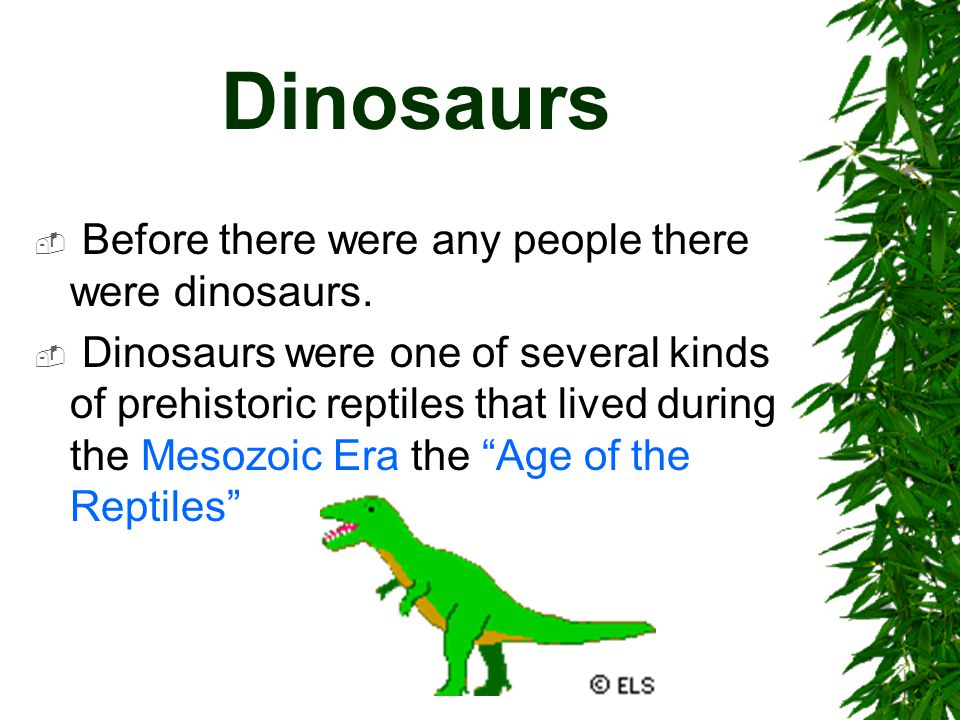 Dinosaurs Before there were any people there were dinosaurs.