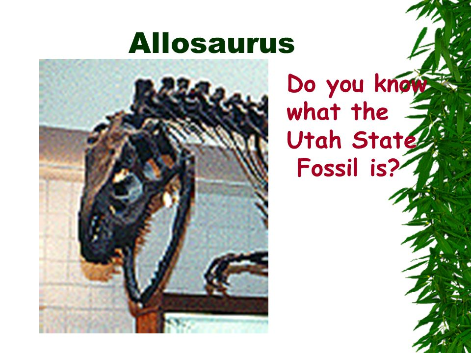 Allosaurus Do you know what the Utah State Fossil is