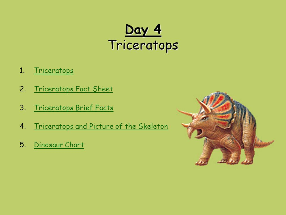 Day 4 Triceratops Triceratops Triceratops Fact Sheet