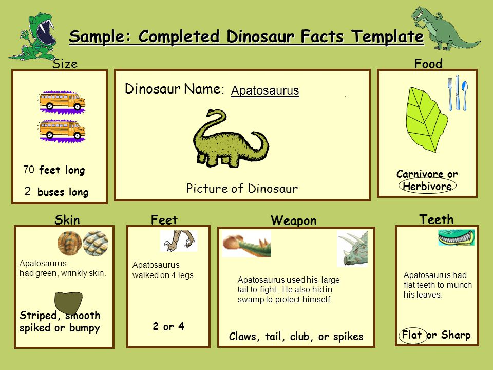 Sample: Completed Dinosaur Facts Template