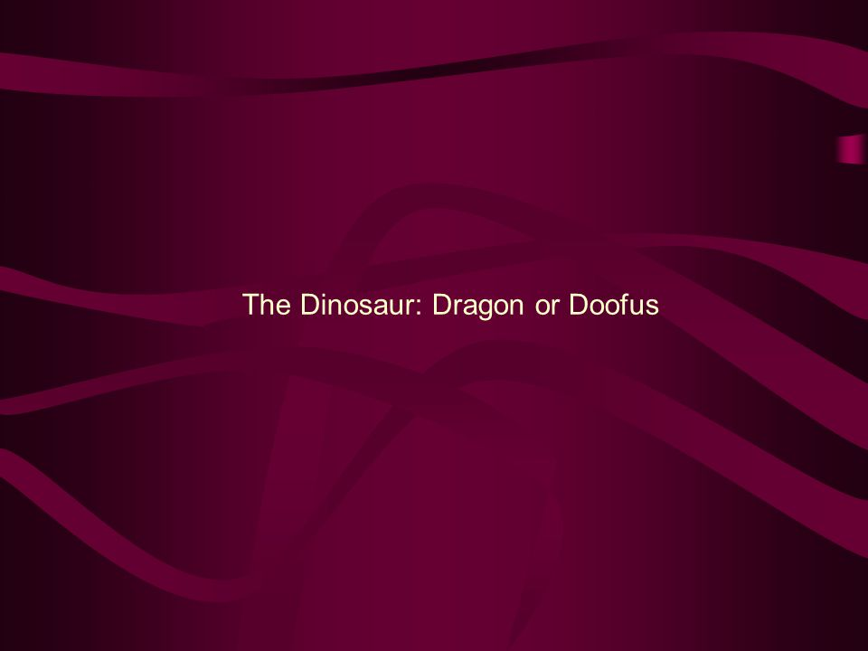 The Dinosaur: Dragon or Doofus