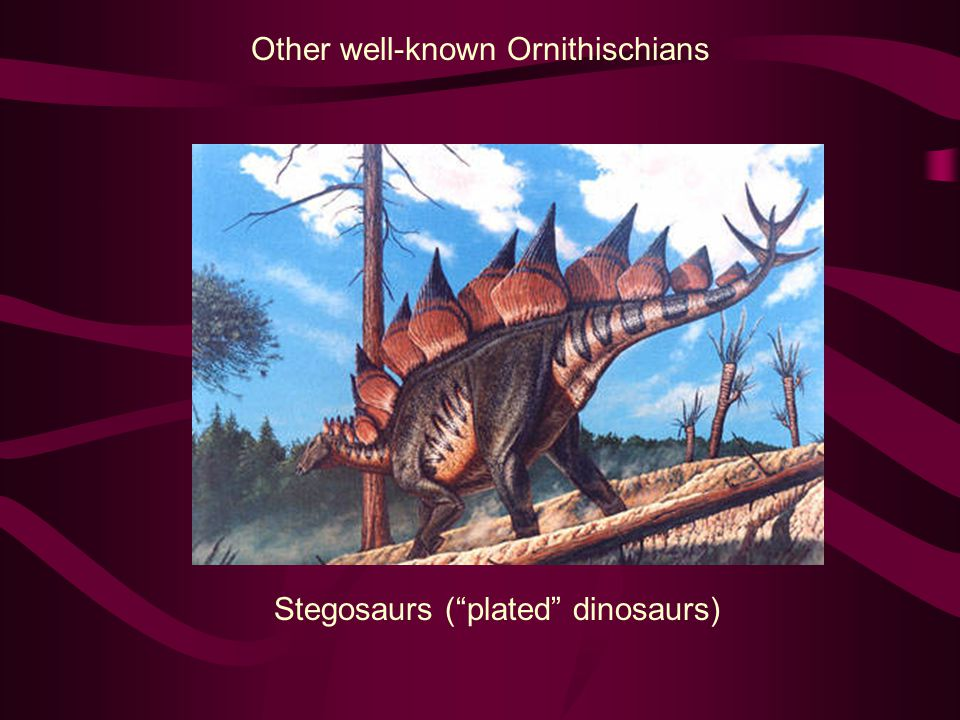 Other well-known Ornithischians