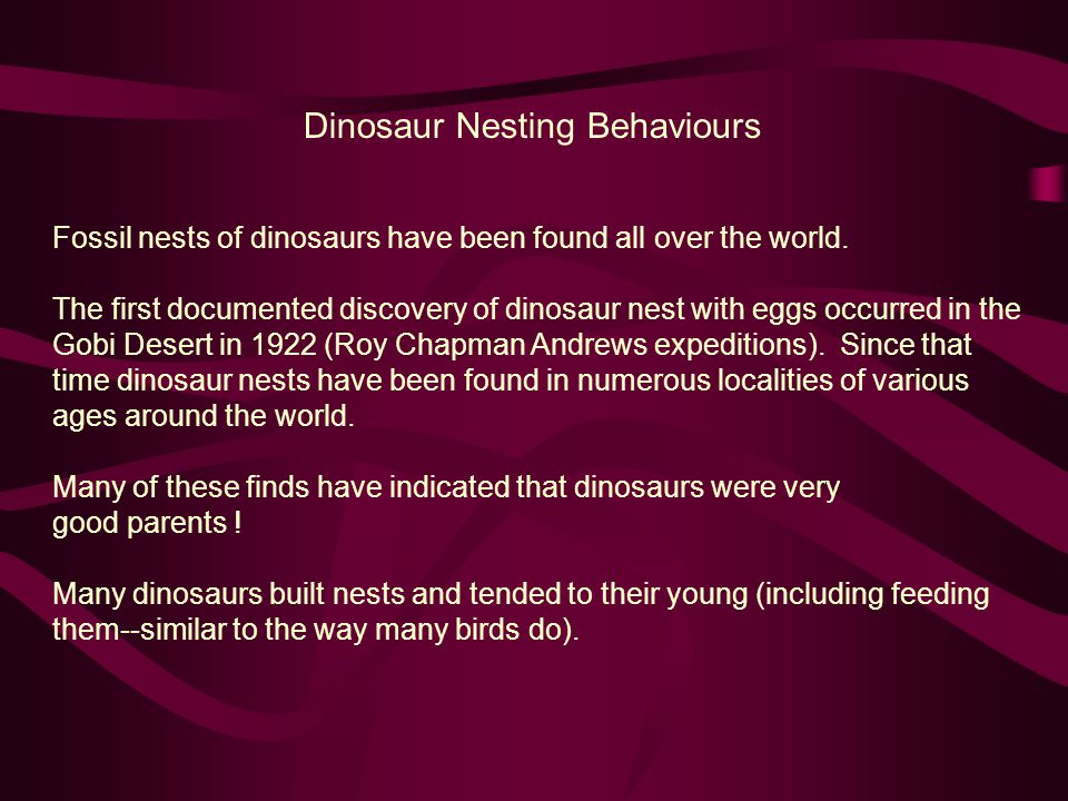 Dinosaur Nesting Behaviours