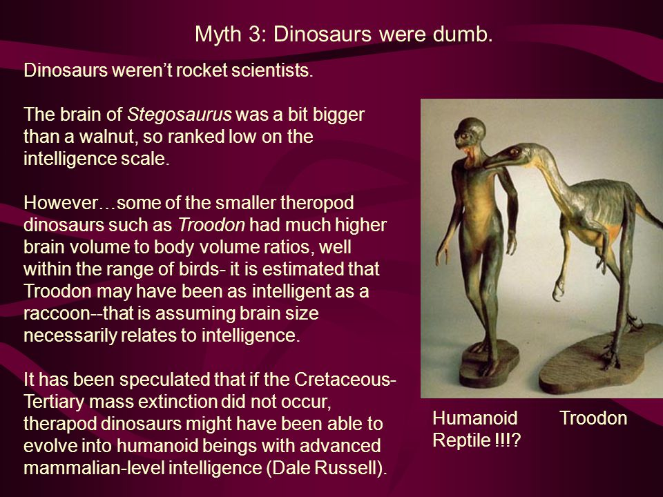 Myth 3: Dinosaurs were dumb.