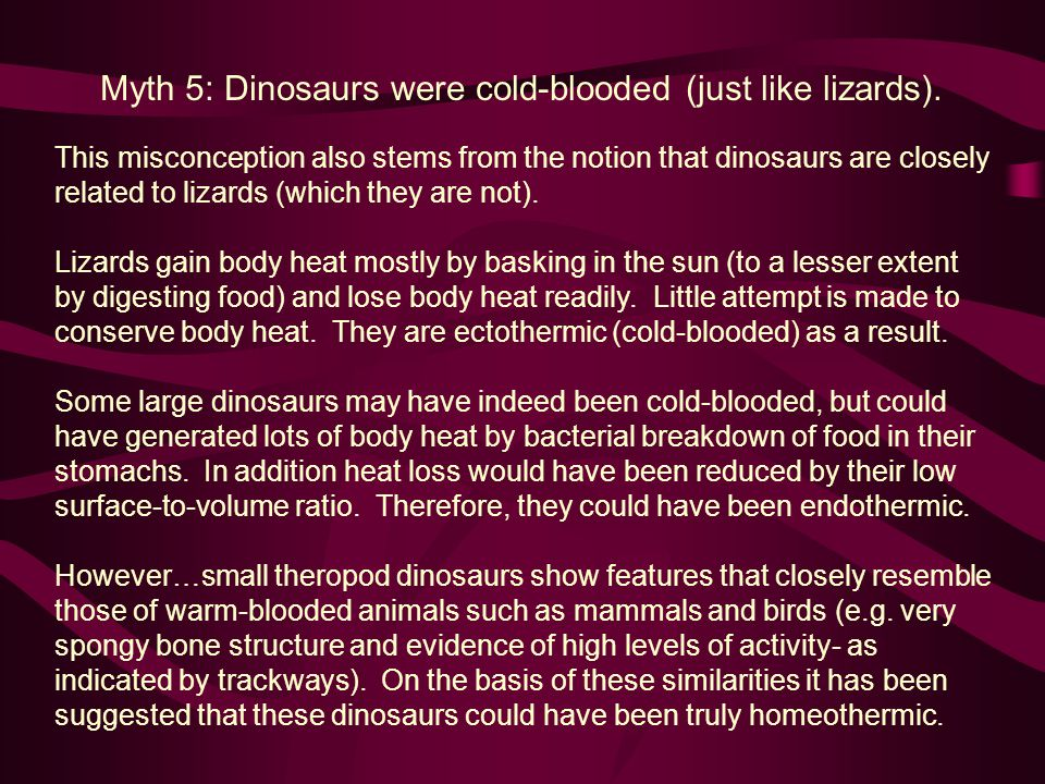 Myth 5: Dinosaurs were cold-blooded (just like lizards).
