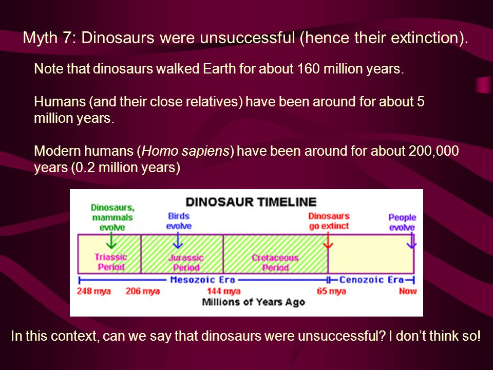Myth 7: Dinosaurs were unsuccessful (hence their extinction).