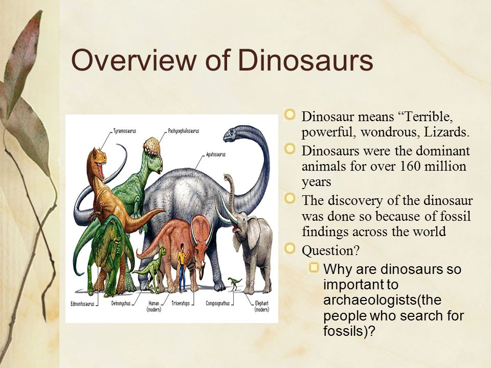 Overview of Dinosaurs Dinosaur means Terrible, powerful, wondrous, Lizards. Dinosaurs were the dominant animals for over 160 million years.