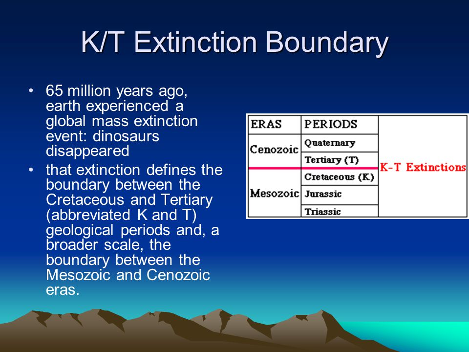 K/T Extinction Boundary