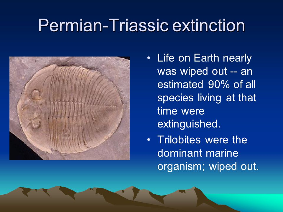 Permian-Triassic extinction