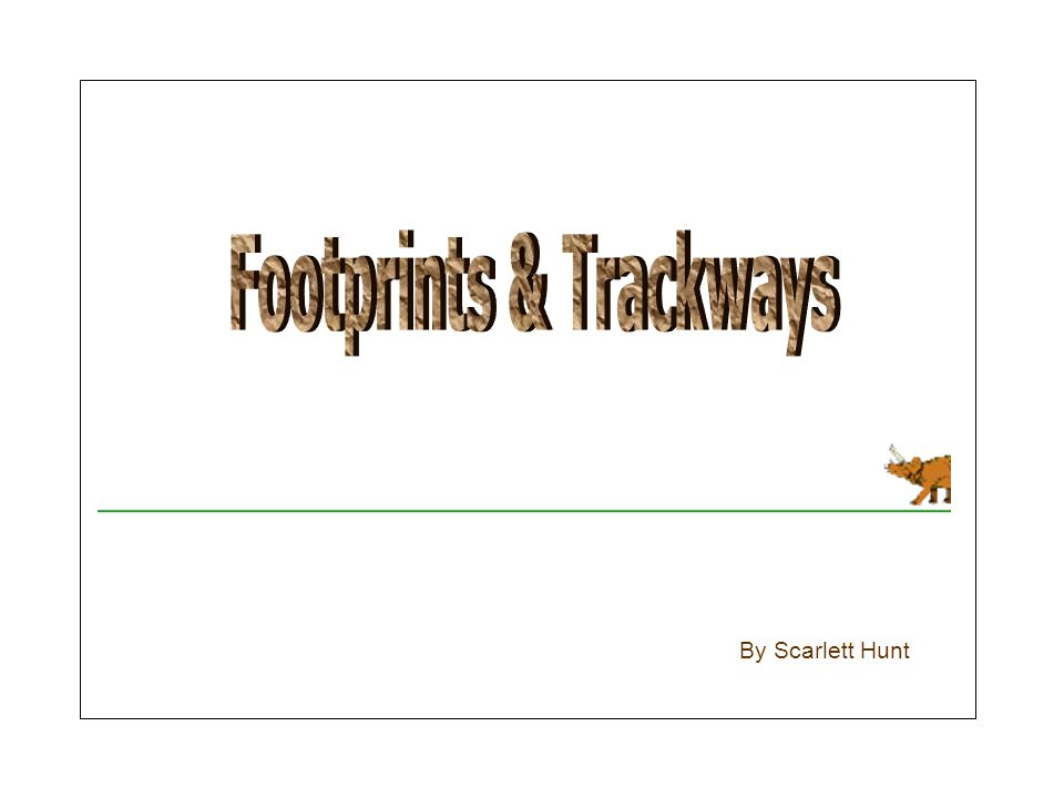 Footprints & Trackways