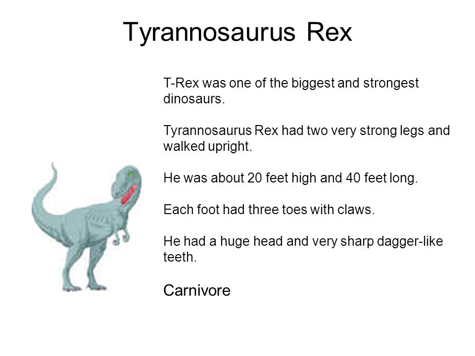 Tyrannosaurus Rex Carnivore