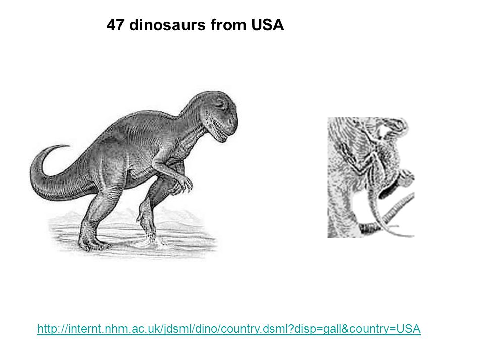 47 dinosaurs from USA http://internt.nhm.ac.uk/jdsml/dino/country.dsml disp=gall&country=USA