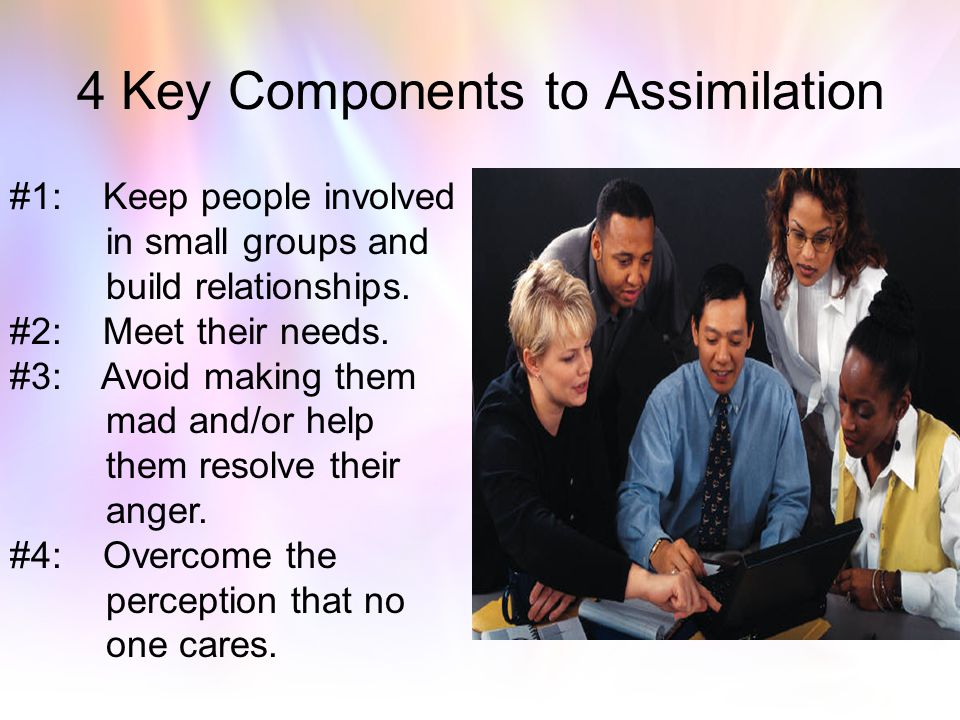 4 Key Components to Assimilation