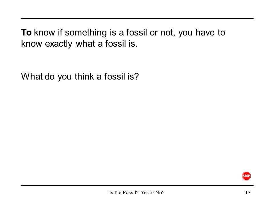 What do you think a fossil is